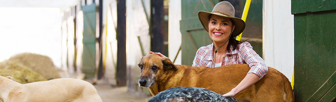 Dog Care - Interviewing a Breeder: A Step-by-Step Guide