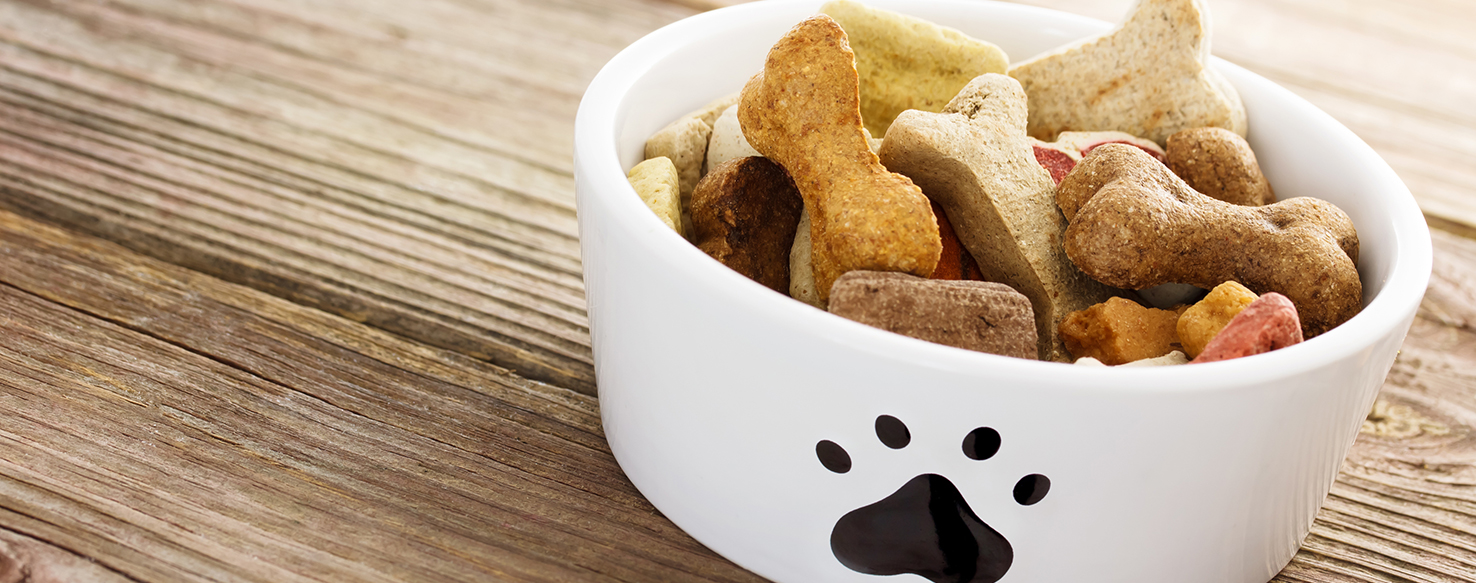 Dog Care - What Do Pet Owners Value when Choosing Pet Food?