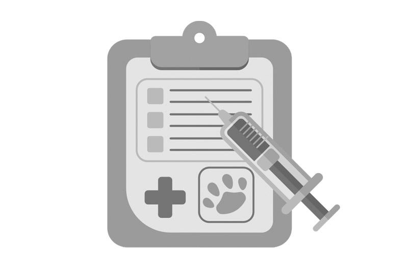 Febre de loro (Psittacosis): Síntomas, Diagnóstico y Tratamientos